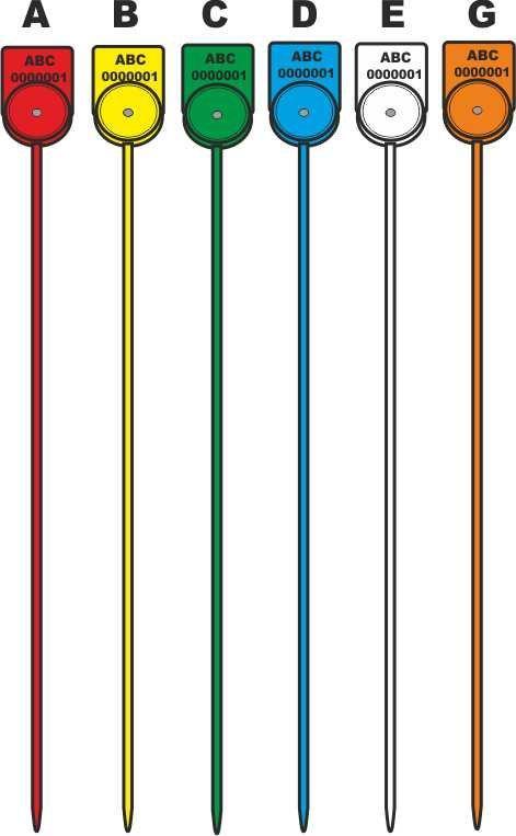 [cml_media_alt id='6669']alcyone colore 2016 web[/cml_media_alt]